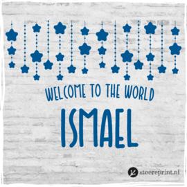 Geboorteraamsticker Ismael