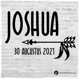 Geboorteraamsticker Joshua