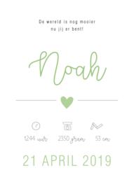 Geboorteposter Noah