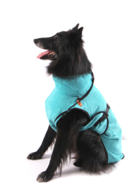 SuperFurDogs Classic Chillcoat - Aqua