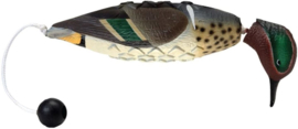 Avery EZ Bird - Green Wing Teal