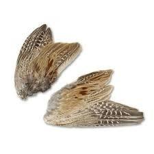 NIEUW! Verse fazantenvleugels