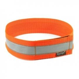Halsband reflecterend - neon oranje