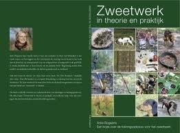`Zweetwerk in theorie en praktijk` door Anke Bogaerts