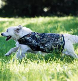 Rambo Dog Rug - camo