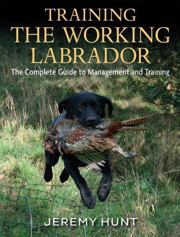 Training the Working Labrador - Jeremy Hunt