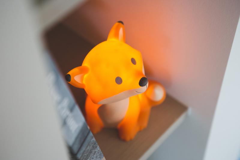 Oranje Cesar de Vos Nachtlampje Led
