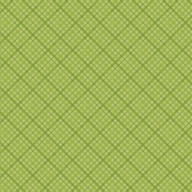 Patterned single-sided l.green plaid
