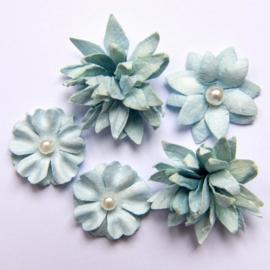 Flower Mini Series 01 Sky