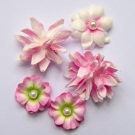 Flower Mini Series 01 Blush