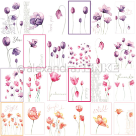 Flowers Paper Mixed Tulips International
