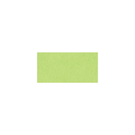 Smooth Cardstock Key Lime