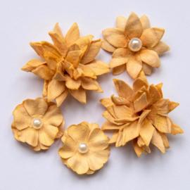 Flower Mini Series 01 Ginger