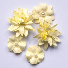 Flower Mini Series 01 Cream