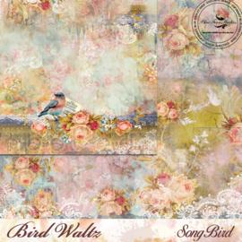 Bird Waltz Song Bird