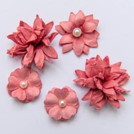 Flower Mini Series 01 Scarlet