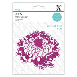 Dies Chrysanthemum