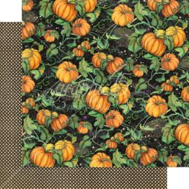 Midnight Tales Pumpkin Patch
