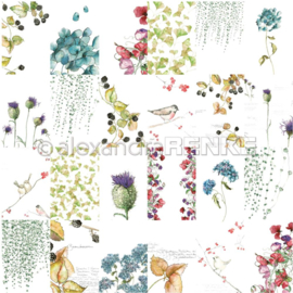 Flowers Paper Autumn