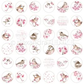 Flowers Paper Cherry Blossom Circle International