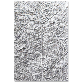3D Textured Impressions Embossing Folder Leaf Veins