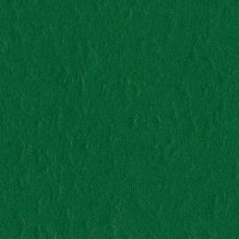 Mono Canvas Classic green