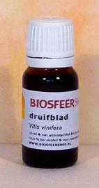 Druifblad tinctuur 10 ml