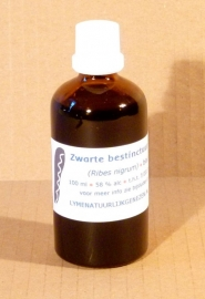 Blackcurrant tincture 100 ml