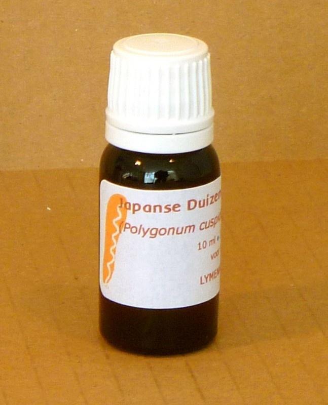 Japanse Duizendknoop tinctuur 10 ml