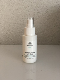 Protect & Repair Foot Spray