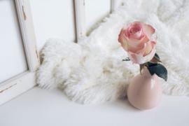 Reed Diffuser Rose Petal