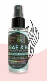 Algae & Hyaluron Hydrolats Organic Booster Spray Mask.