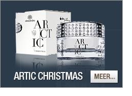 Alessandro Arctic Christmas