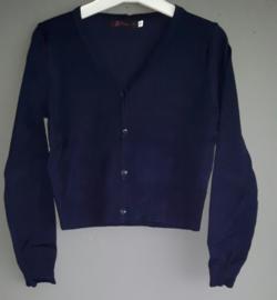 Vestje gebreid (donkerblauw)