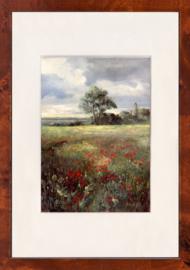bloemen landschap