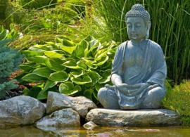 XLPoster indoor&outdoor zittende Buddha