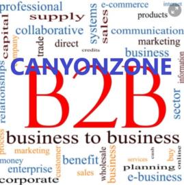 Zakelijk / B2B aankopen bij CanyonZone