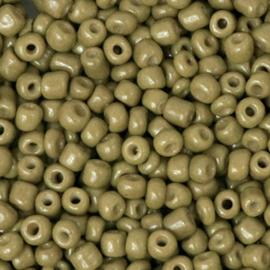 rocailles kaktus groen 3 mm