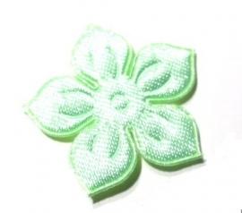 .1Applicatie bloesem groen (10AP00159)