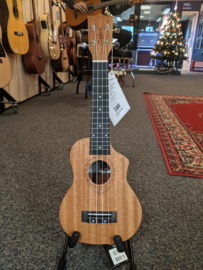 Tanglewood TWT 1CE