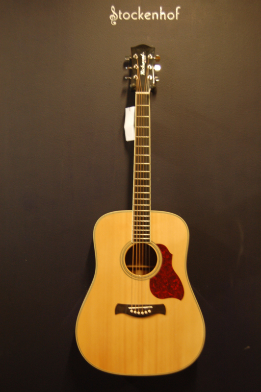 Richwood Dreadnought compleet massief