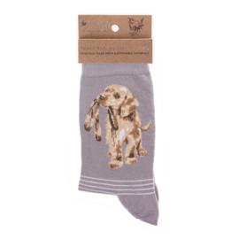 """Wrendale sokken """"Hopeful"""" - labrador"""