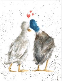 "Wrendale mini card ""Duck Love"" - eend"