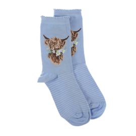 "Wrendale sokken ""Daisy Coo"" - koe"