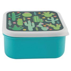 Lunchdoosje vierkant - colourful cactus