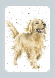 "Wrendale postcard ""Golden Boy"" - Golden Retriever"