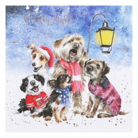 """Wrendale Boxed Christmas Cards  """"Oh Holy Night"""""""