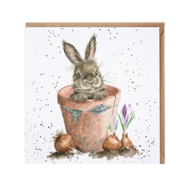 "Wrendale greeting card - ""The Flower Pot"""
