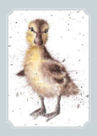 "Wrendale postcard ""Just Hatched"" - eendje"