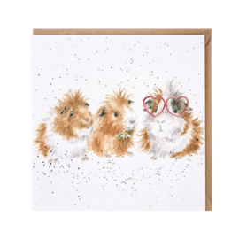 "Wrendale greeting card - ""The Trendsetter"" - cavia"